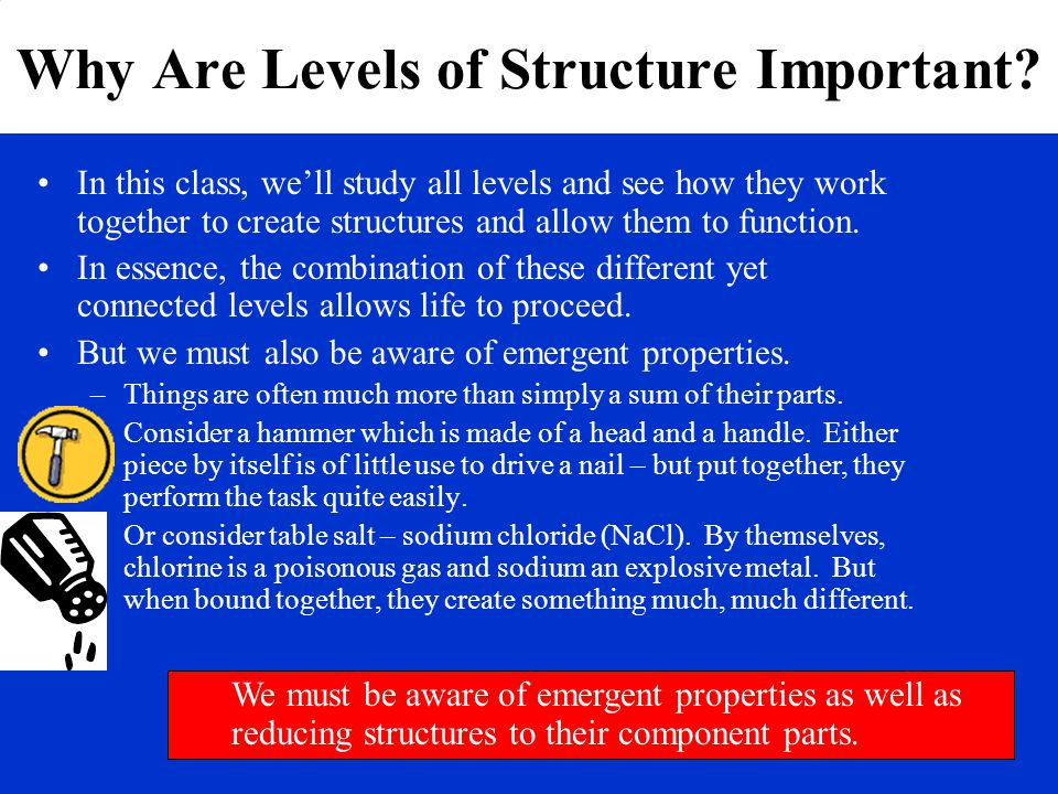 Why Are Levels of Structure Important