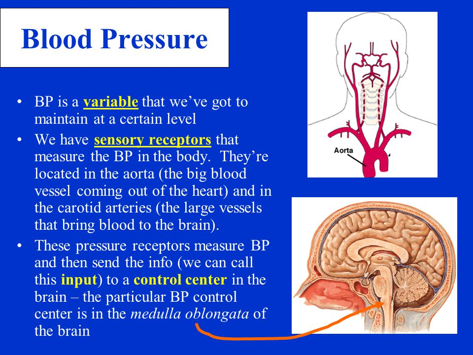 Blood Pressure BP is a variable that we've got to maintain at a certain level.