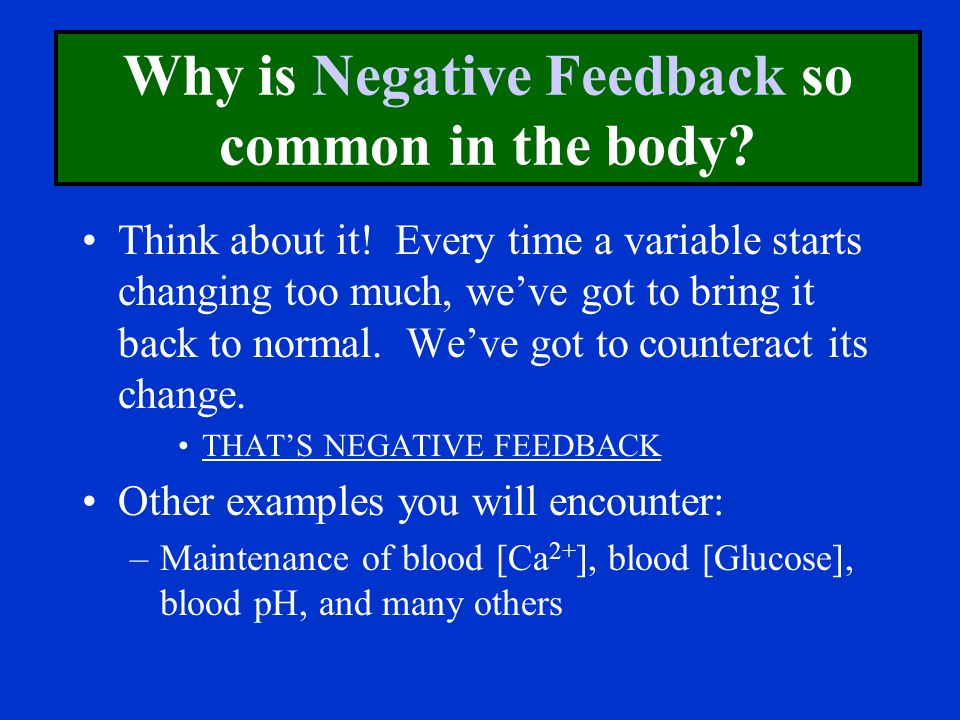 Why is Negative Feedback so common in the body