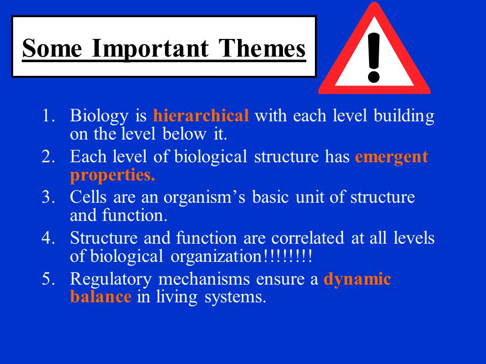 Some Important Themes Biology is hierarchical with each level building on the level below it.