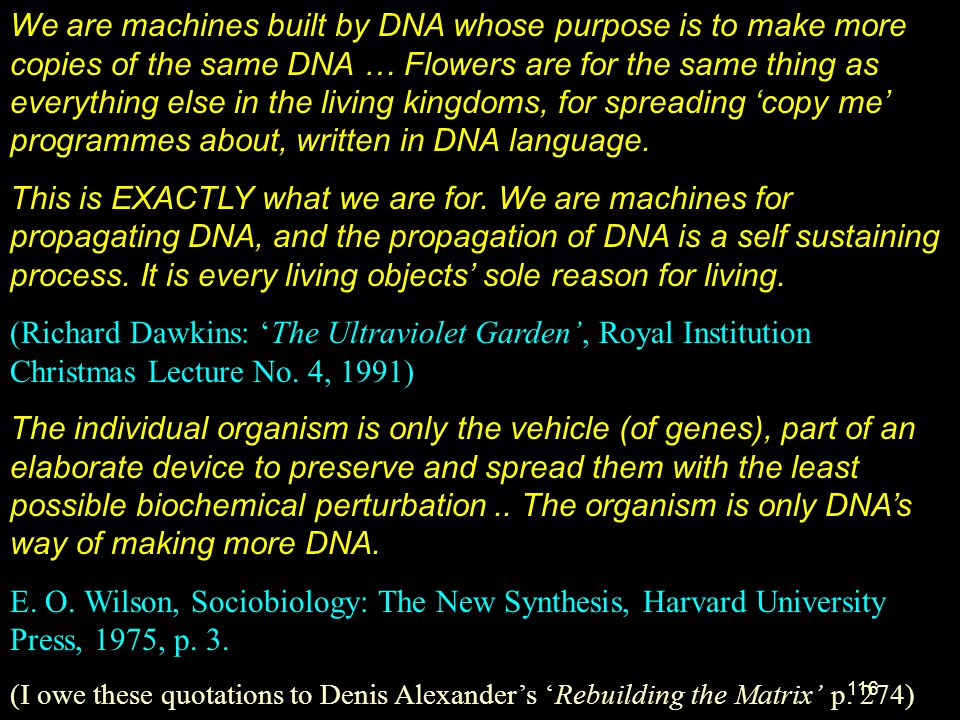 We are machines built by DNA whose purpose is to make more copies of the same DNA … Flowers are for the same thing as everything else in the living kingdoms, for spreading 'copy me' programmes about, written in DNA language.