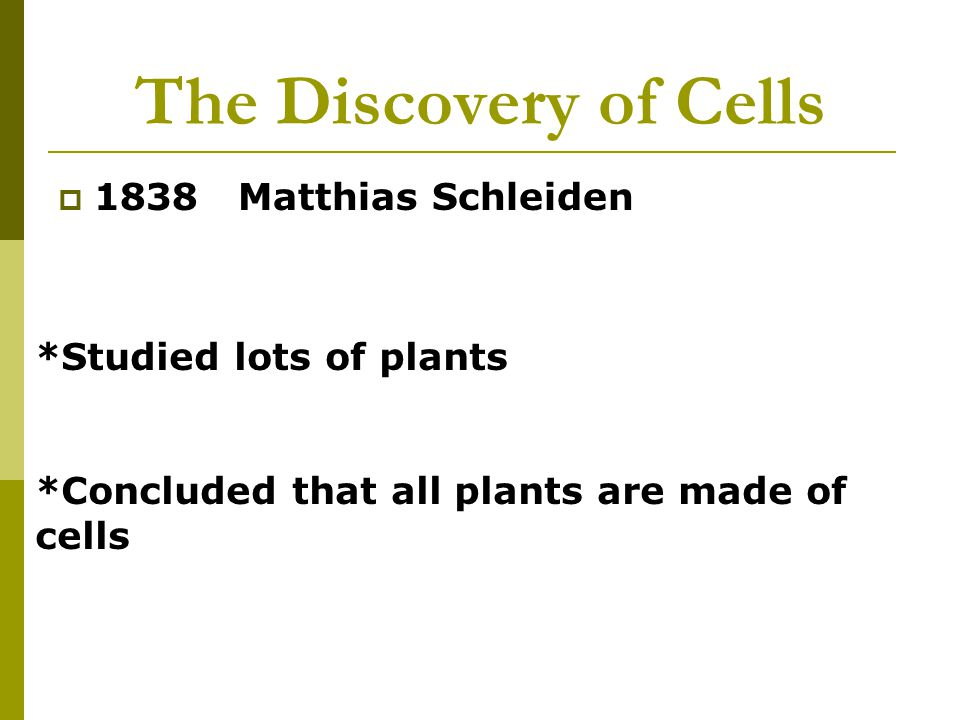 The Discovery of Cells 1838 Matthias Schleiden *Studied lots of plants