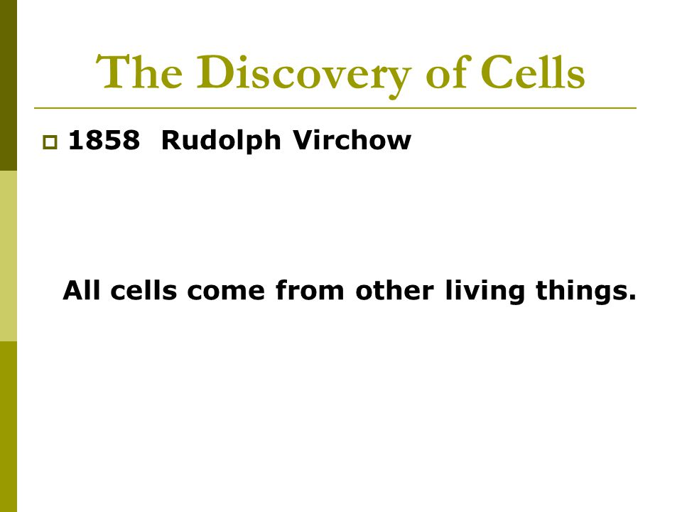 All cells come from other living things.