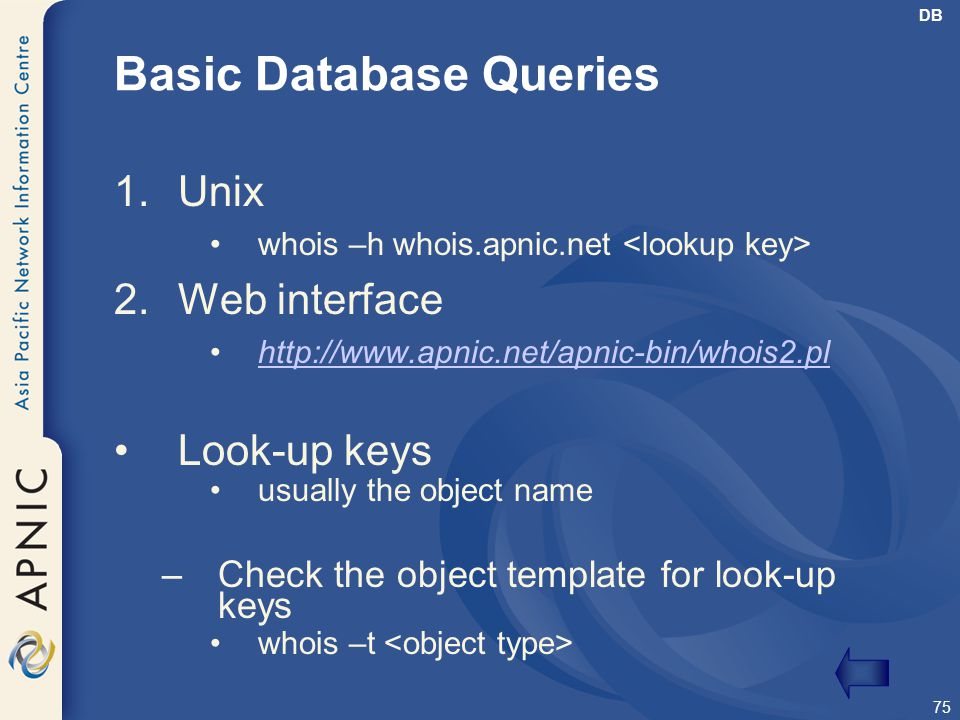 Basic Database Queries