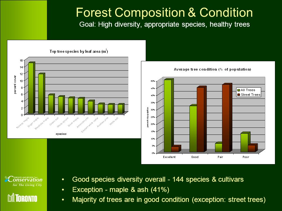 Forest Composition & Condition Goal: High diversity, appropriate species, healthy trees
