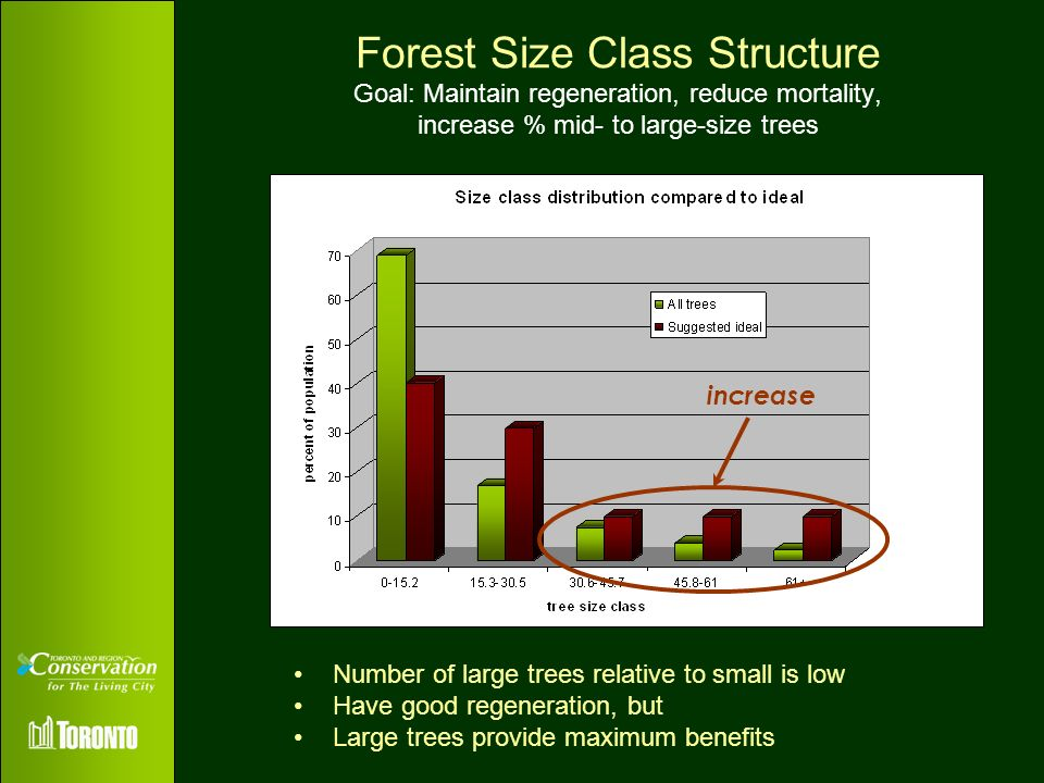 Forest Size Class Structure Goal: Maintain regeneration, reduce mortality, increase % mid- to large-size trees
