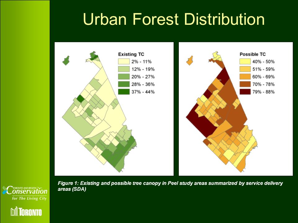Urban Forest Distribution