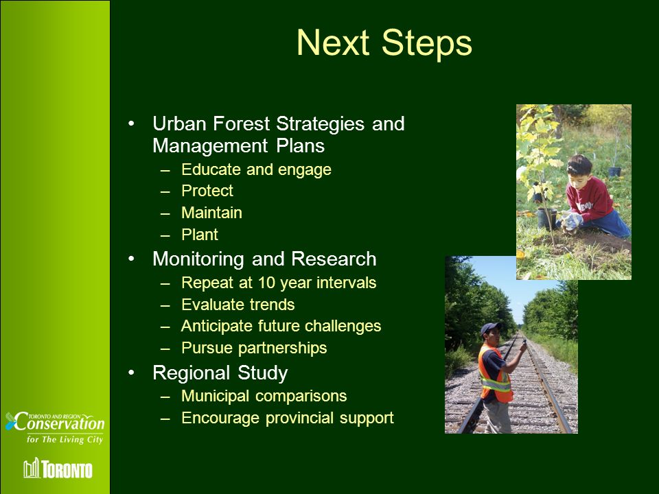 Next Steps Urban Forest Strategies and Management Plans