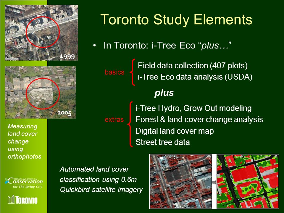 Toronto Study Elements