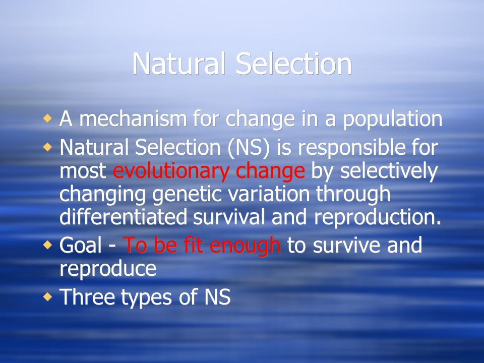 Natural Selection A mechanism for change in a population