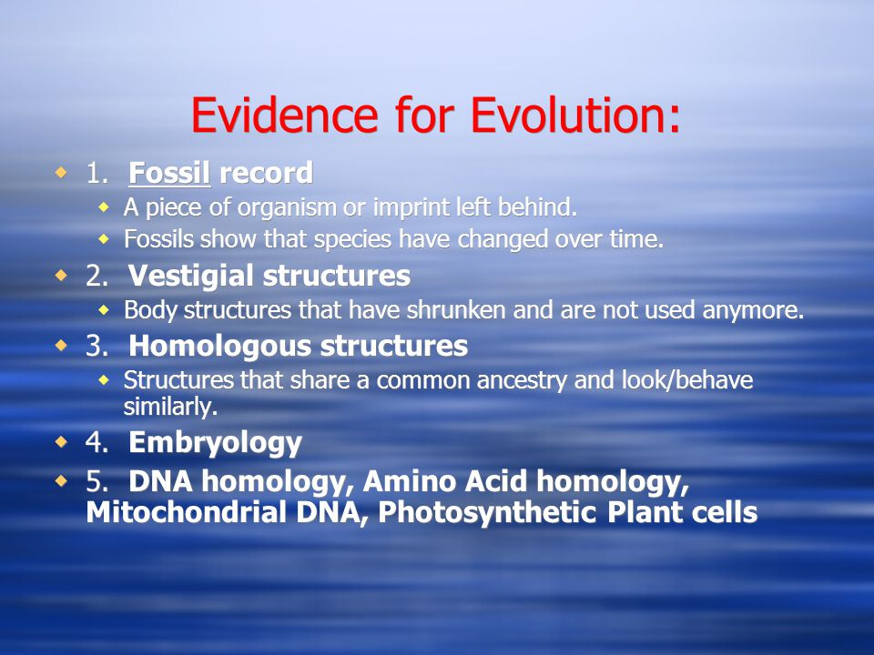 Evidence for Evolution: