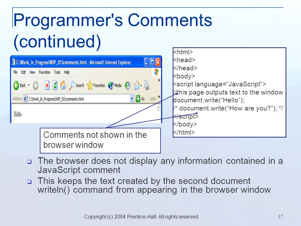 Programmer s Comments (continued)