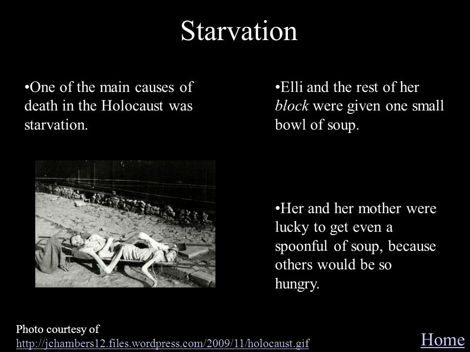 Starvation One of the main causes of death in the Holocaust was starvation. Elli and the rest of her block were given one small bowl of soup.