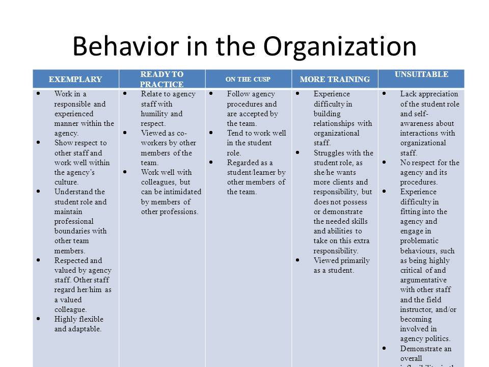 Behavior in the Organization