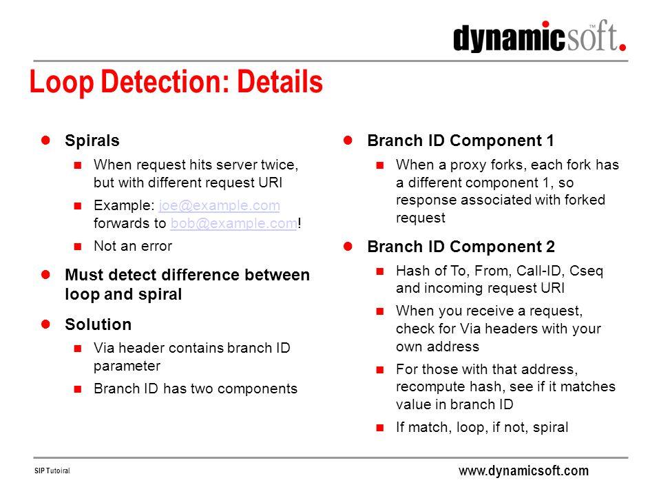 Loop Detection: Details