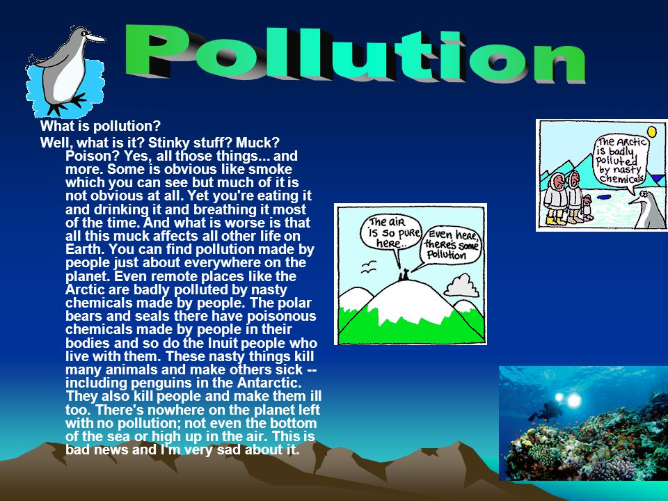 Pollution What is pollution