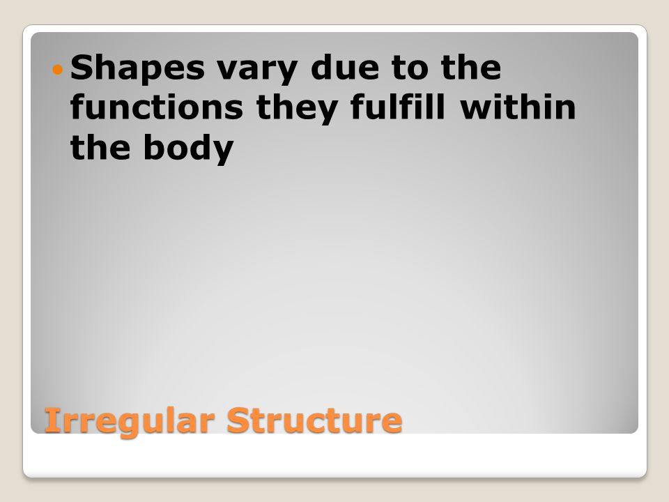 Shapes vary due to the functions they fulfill within the body