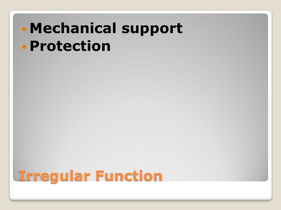 Mechanical support Protection Irregular Function