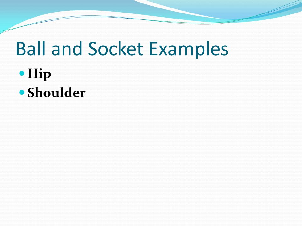 Ball and Socket Examples