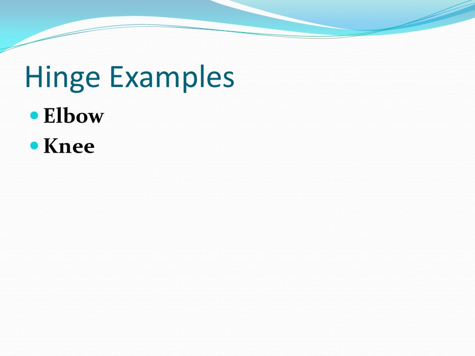 Hinge Examples Elbow Knee