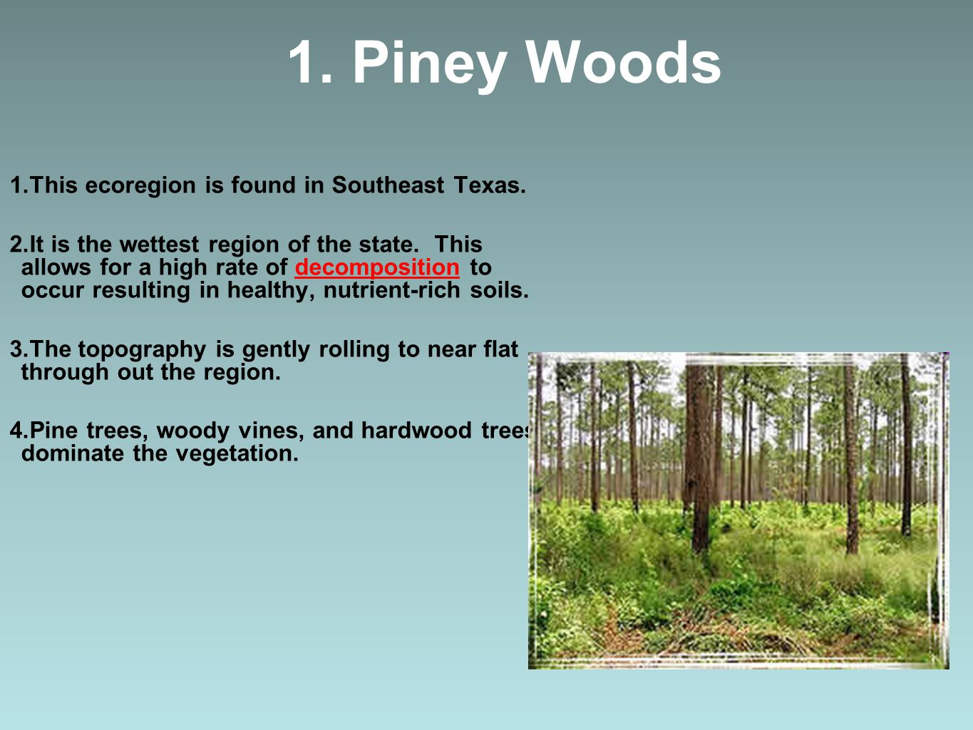 1. Piney Woods This ecoregion is found in Southeast Texas.