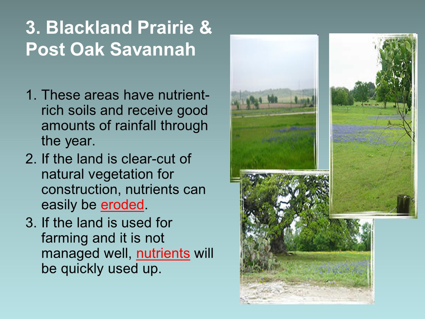 3. Blackland Prairie & Post Oak Savannah