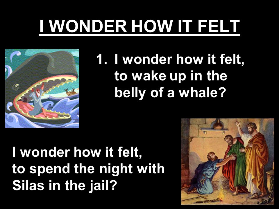 I WONDER HOW IT FELT I wonder how it felt, to wake up in the belly of a whale.