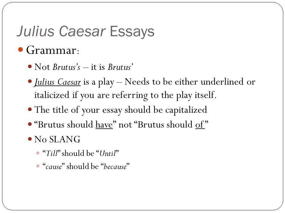 character analysis julius caesar essay