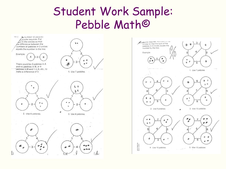 Student Work Sample: Pebble Math©