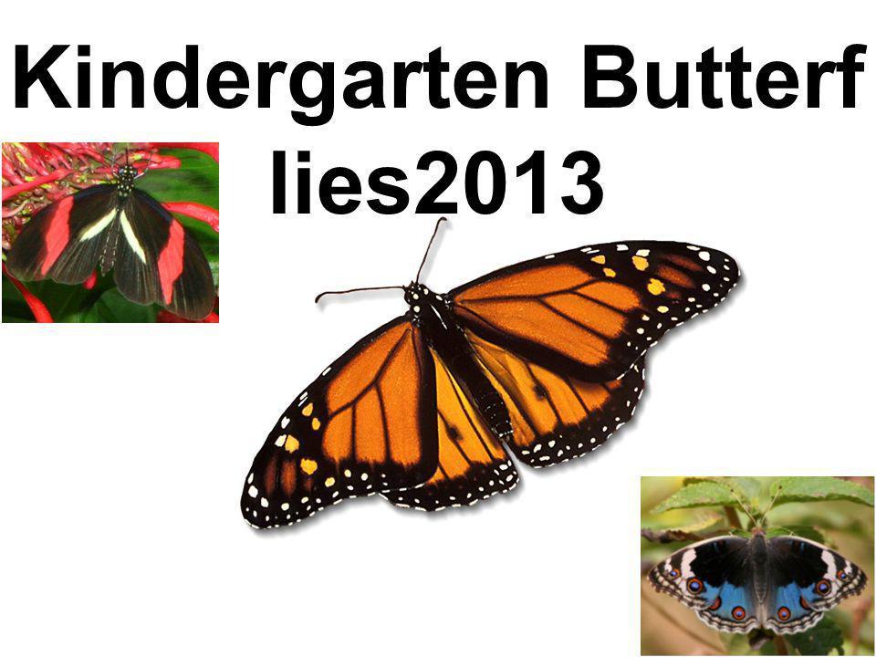 Kindergarten Butterflies2013
