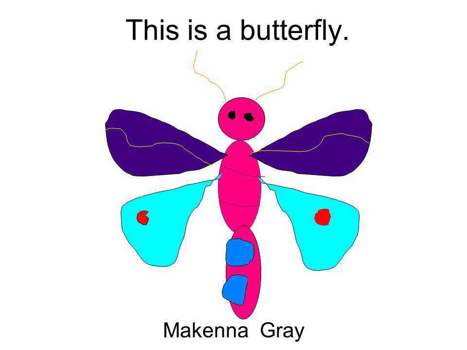 This is a butterfly. Makenna Gray