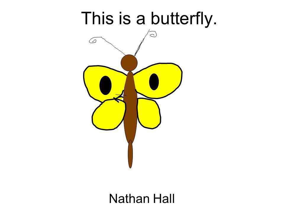 This is a butterfly. Nathan Hall