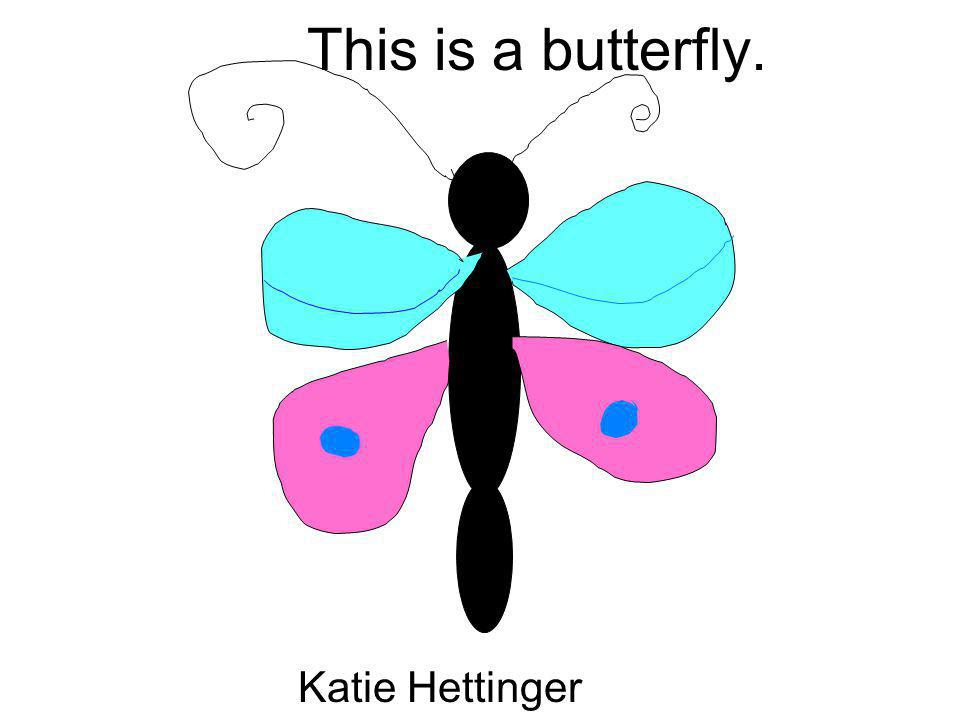 This is a butterfly. Katie Hettinger