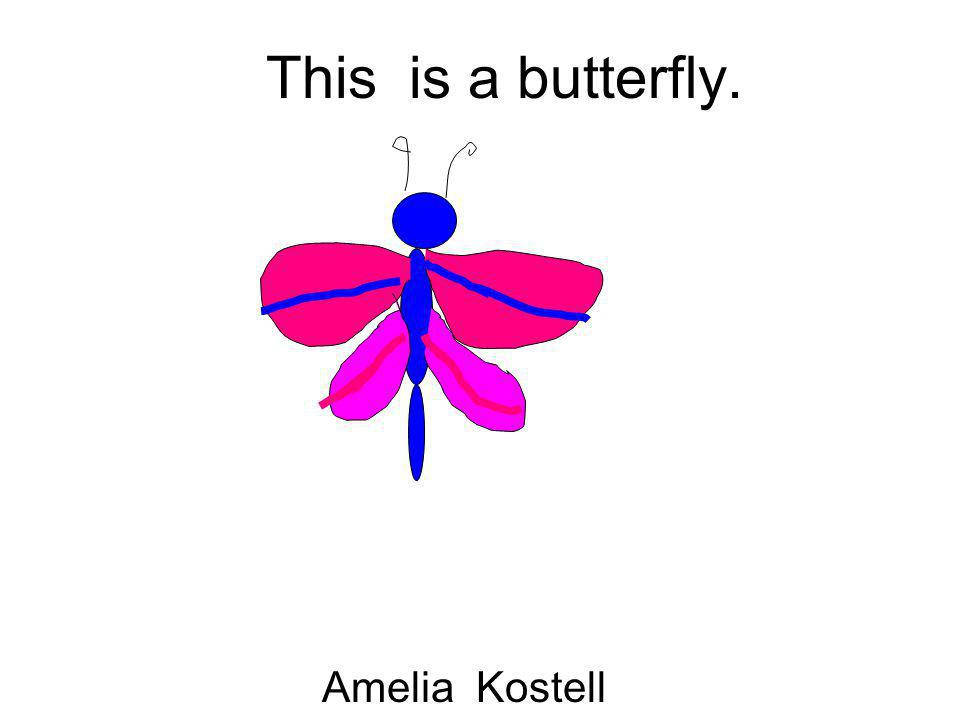 This is a butterfly. Amelia Kostell