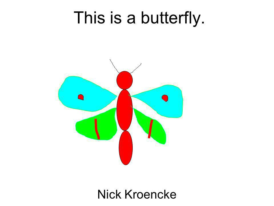 This is a butterfly. Nick Kroencke