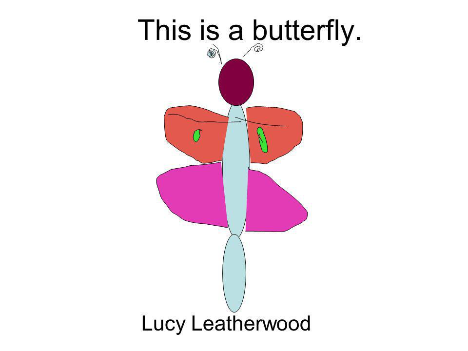 This is a butterfly. Lucy Leatherwood