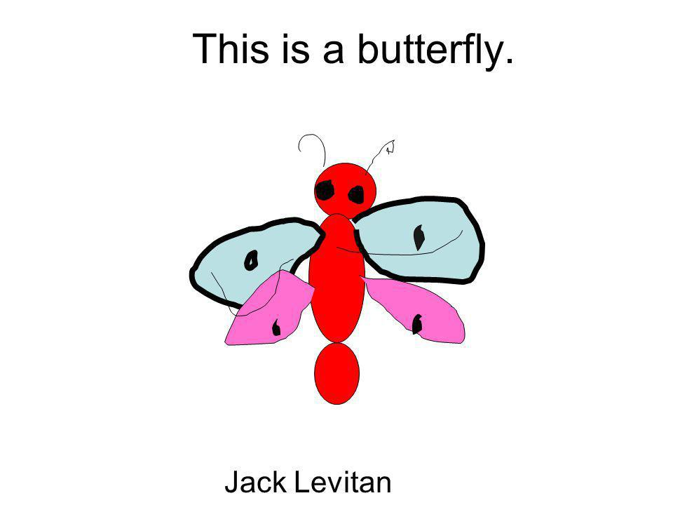 This is a butterfly. Jack Levitan