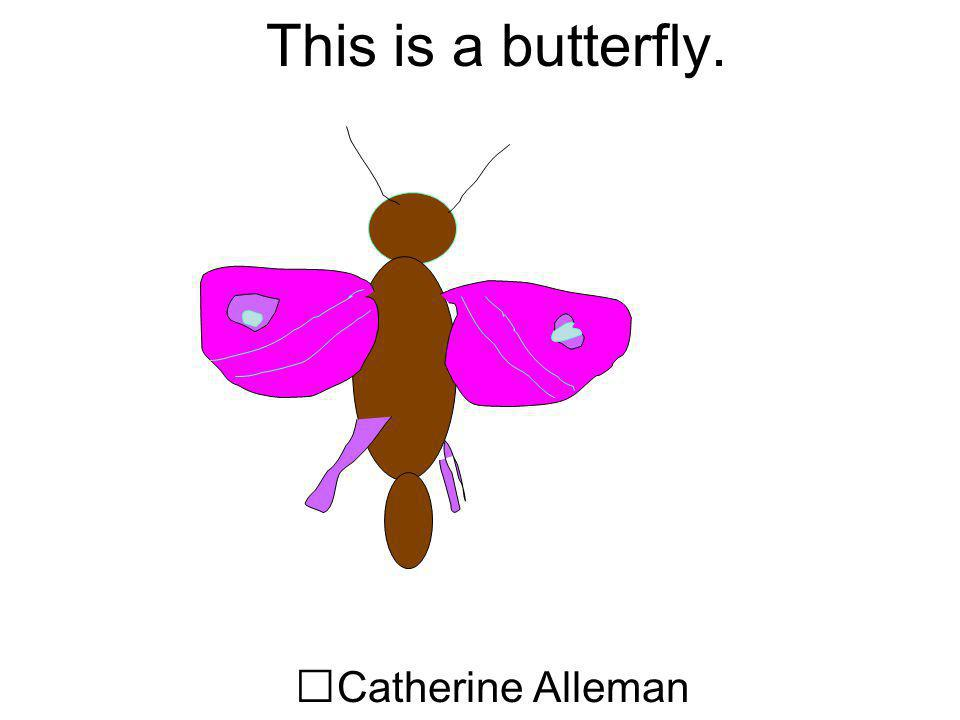 This is a butterfly. Catherine Alleman