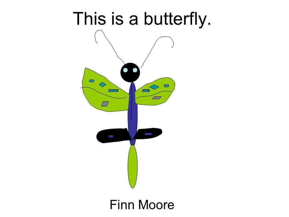 This is a butterfly. Finn Moore