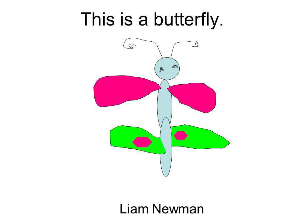 This is a butterfly. Liam Newman