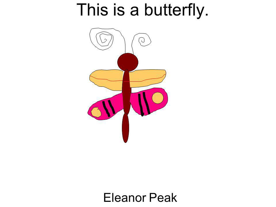 This is a butterfly. Eleanor Peak