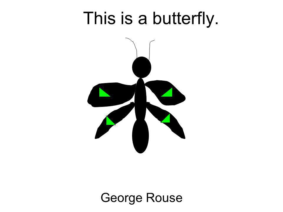 This is a butterfly. George Rouse