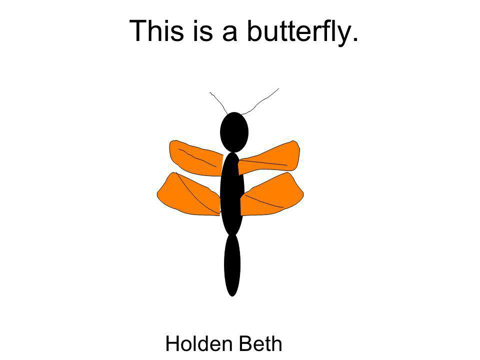This is a butterfly. Holden Beth