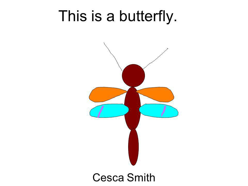 This is a butterfly. Cesca Smith