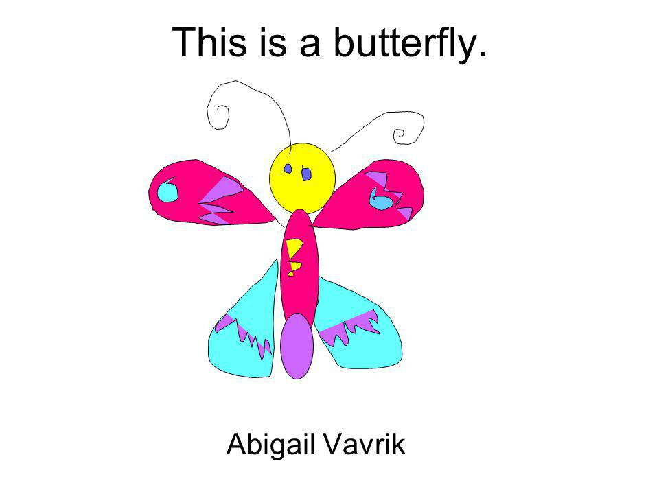 This is a butterfly. Abigail Vavrik