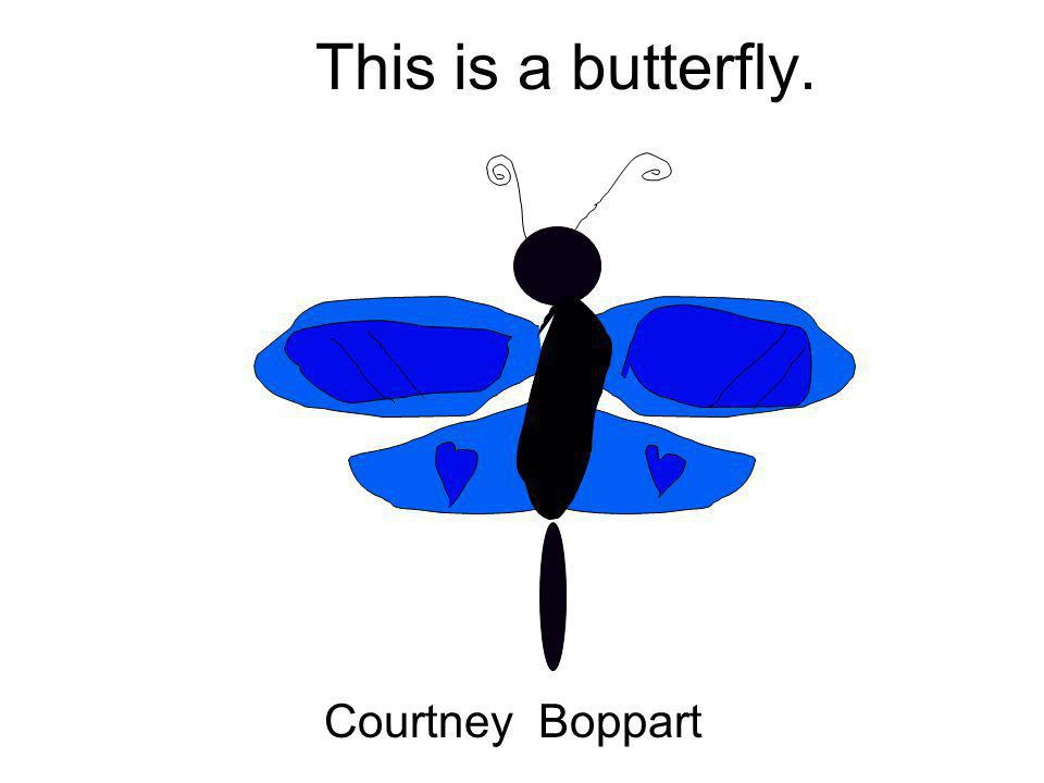 This is a butterfly. Courtney Boppart