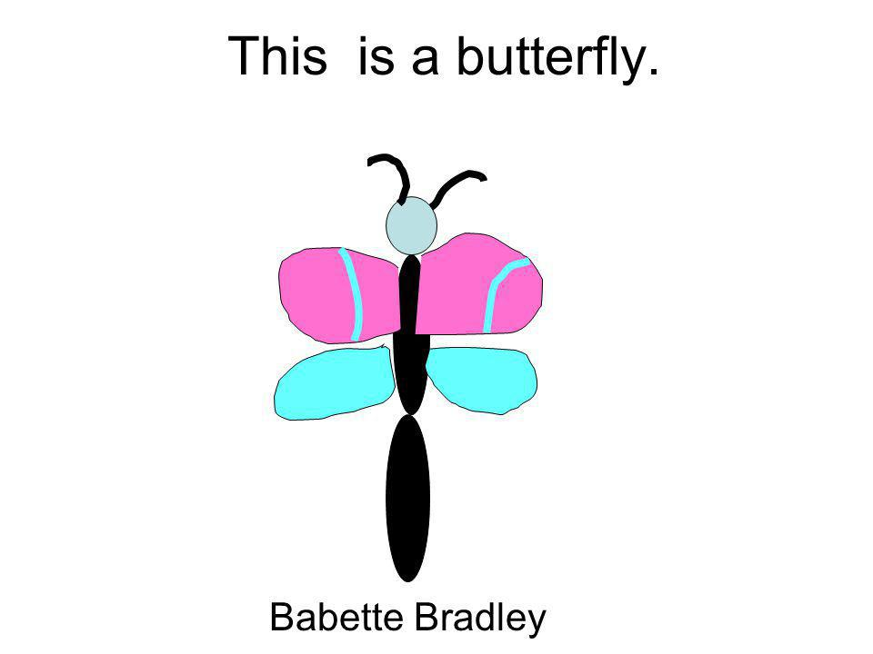This is a butterfly. Babette Bradley