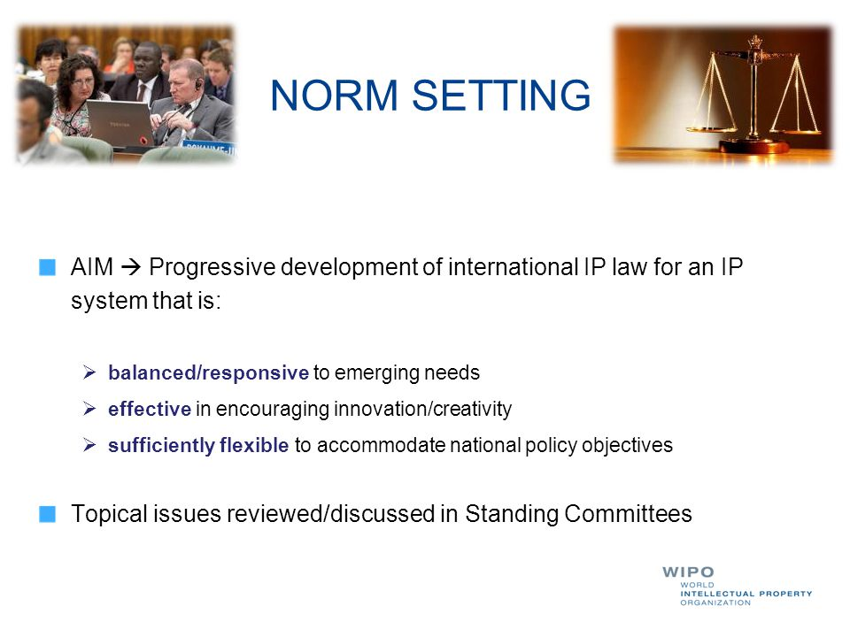 NORM SETTING AIM  Progressive development of international IP law for an IP system that is: balanced/responsive to emerging needs.