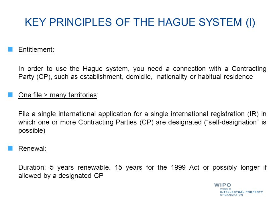 KEY PRINCIPLES OF THE HAGUE SYSTEM (I)