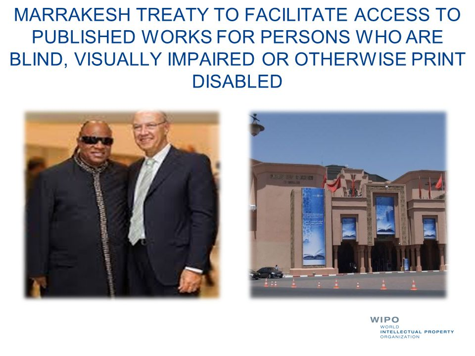 MARRAKESH TREATY TO FACILITATE ACCESS TO PUBLISHED WORKS FOR PERSONS WHO ARE BLIND, VISUALLY IMPAIRED OR OTHERWISE PRINT DISABLED
